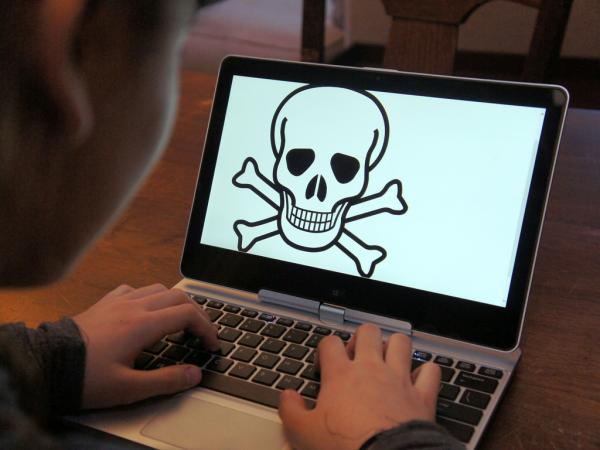 Top 6 Beginner's Tips to Stay Safe Online